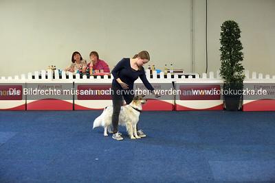 Dogdancing0017