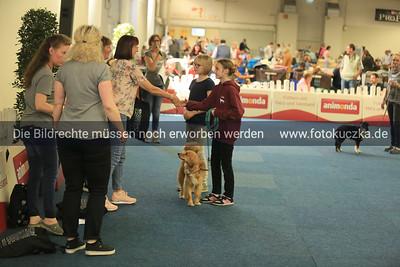 Dogdancing0024