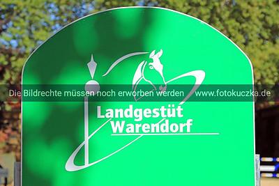 Hengstparade Warendorf 2018-0001