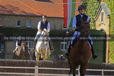 Hengstparade Warendorf 2018-0012