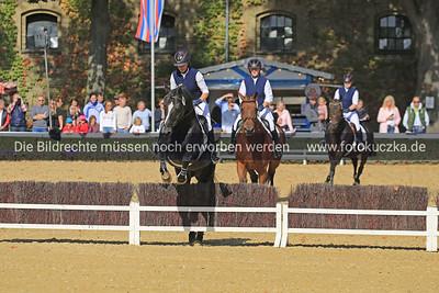 Hengstparade Warendorf 2018-0013
