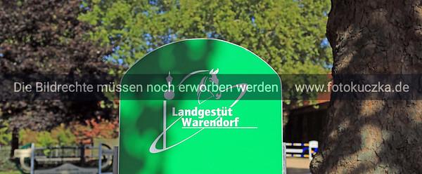 Hengstparade Warendorf 2018-0002
