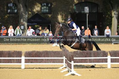 Hengstparade Warendorf 2018-0016