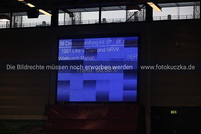 Marion Wiebusch auf Like a Diamond NRW0008