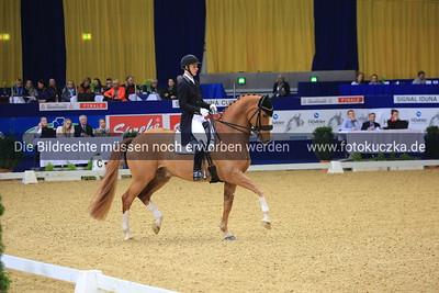 Daniel Bachmann Andersen auf Blue Horse Zepter0019