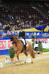 Daniel Bachmann Andersen auf Blue Hors Zepter0347