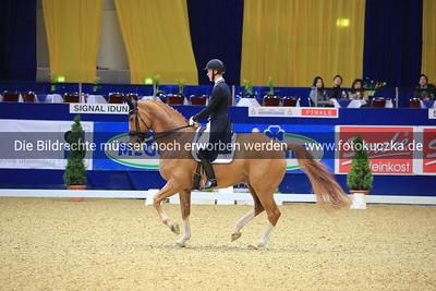 Daniel Bachmann Andersen auf Blue Hors Zepter0354
