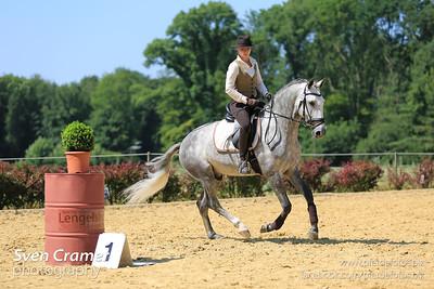 Working Equitation Turnier - 05.-07.07.2013