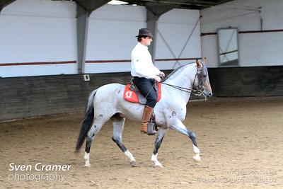 Working Equitatiion Turnier, Lengelshof, Ratingen, 31.08.2012