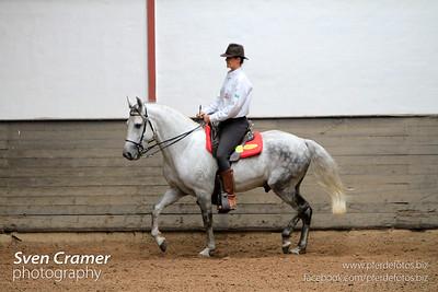 Urano de Maripa, Astrid Oberniedermayr, Working Equitatiion Turnier, Lengelshof, Ratingen, 31.08.2012