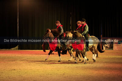 13.10.2012 Hund und Pferd in Dortmund