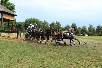 Riesenbeck International Pony-Vierspänner Tobias Bücker