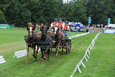Riesenbeck International Pony-Vierspänner Thomas Bär