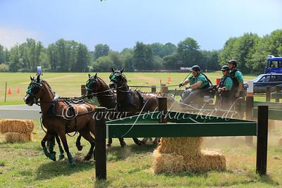 Riesenbeck International Pony-Vierspänner Wilhelm Tischer