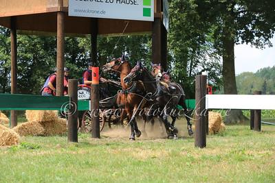 Riesenbeck International Pony-Vierspänner Martin Thiemann