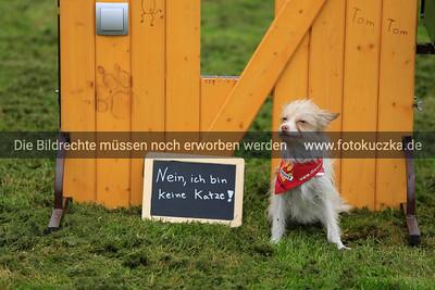 """06.05.2014 PK Messe """"Hund und Katze"""""""