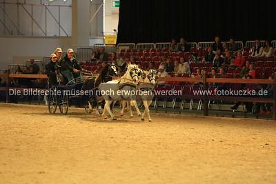 17.-19.10.2014 Hund und Pferd