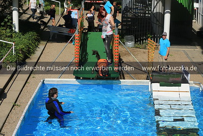 30.08.2015 Dog Event Düsseldorf