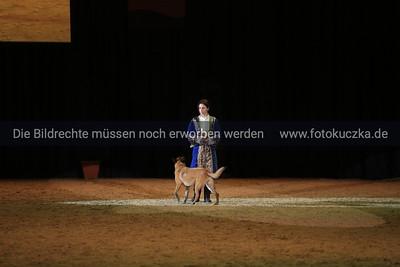 16.01.2016 DogLive Münster Abendshow