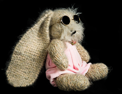 Vera's_Rabbits-25