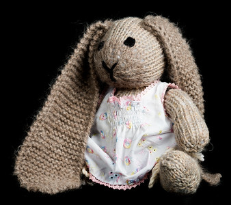 Vera's_Rabbits-15