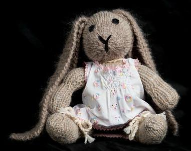 Vera's_Rabbits-12