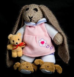 Vera's_Rabbits-20