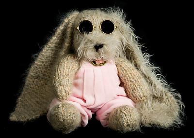 Vera's_Rabbits-24