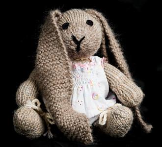 Vera's_Rabbits-14