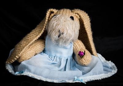 Vera's_Rabbits-38