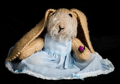 Vera's_Rabbits-39