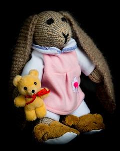 Vera's_Rabbits-21