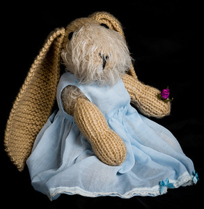 Vera's_Rabbits-43