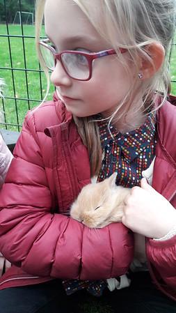 Knuffelen met de konijnen