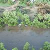 Monsoonal Flooding - Verde River -7/25/21