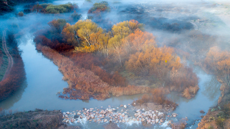 Foggy winter morning on the Verde River, 1/10/17.