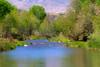 Verde River Walk, 4/17/2011