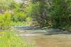 Verde River Float, Lower Tapco to Tuzigoot, 6/6/15 - ASPF
