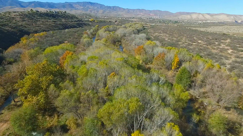 Fall Colors on the Verde River