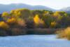 Verde River, Tuzigoot RAP, 11/11/14