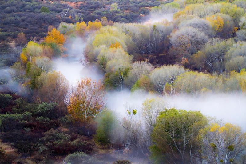 Verde River @ Clarkdale, Lower Tapco RAP in the fog, 11/23/16