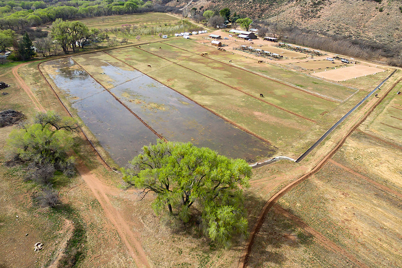 Irrigation with Verde River water near Clarkdale, 3/7/16