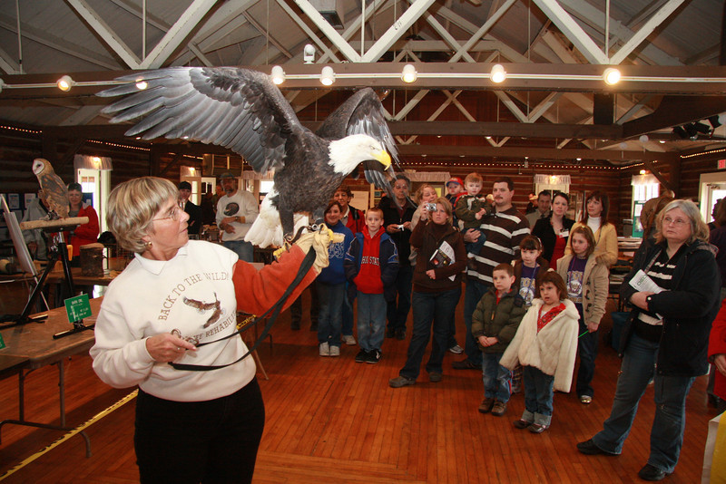"""Guests are fascinated by an eagle held by Mona Rutger. Mona is Founder and Director of Back To the Wild Wildlife and Rehabilitation Center in Castalia.<br />  <a href=""""http://www.backtothewild.com"""">http://www.backtothewild.com</a>"""