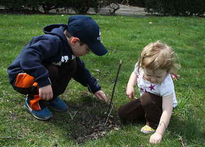 April 23, 2013, Arbor Day Celebration with St.Marys and Tree commission