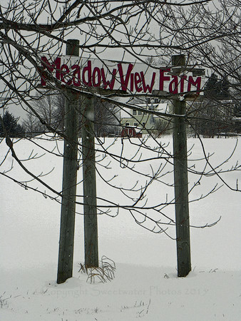 Meadow View Farm