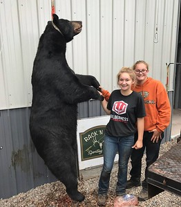 2018 - Shelby Paquin, Addison Co., 409 lbs.