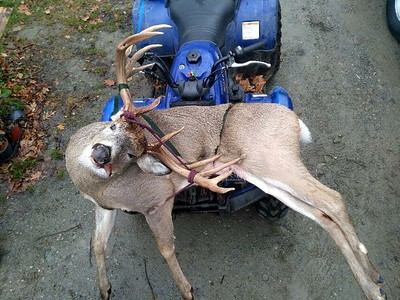 Chris Harding, Bennington Co., 160 lbs., 2017 Rifle. Scored 176 7/8 nontypical gross.  This is the highest scoring deer killed in Vermont since 1991.