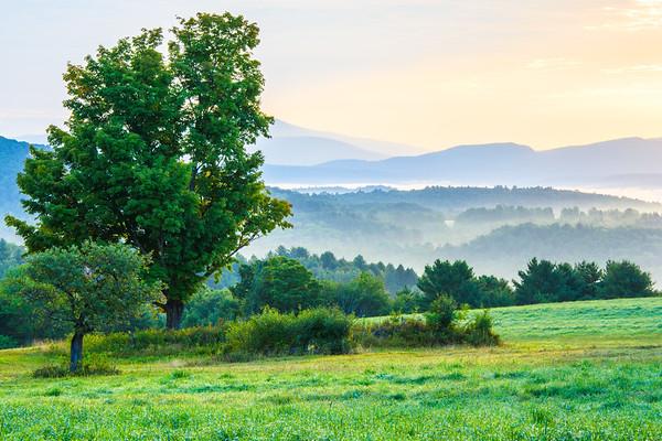 Bragg Hill Sunrise / Norwich, Vermont