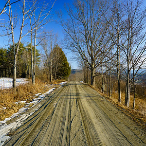 Dirt Road / Norwich, Vermont