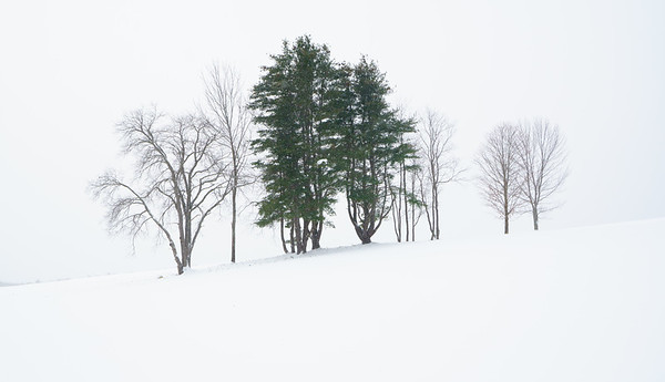 Nor'easter, Bragg Hill / Norwich, Vermont